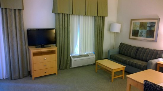 Hampton Inn & Suites Sarasota-Bradenton Airport: TV and couch