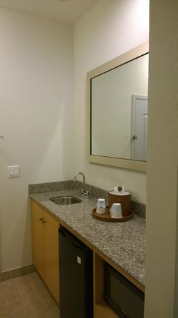 Hampton Inn & Suites Sarasota-Bradenton Airport: Bathroom sink