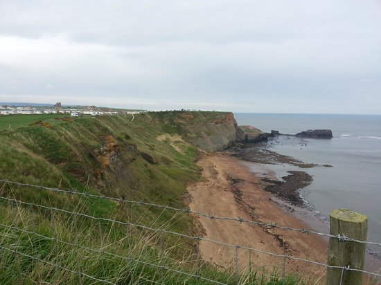 Whitby Holiday Park: Cliff top site