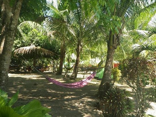 Hostel Seven7 Casa Del Gingi : my hammock <3