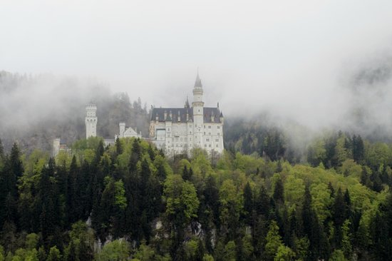Pure Bavaria Tours: A misty day at Schloss Neuschwanstein