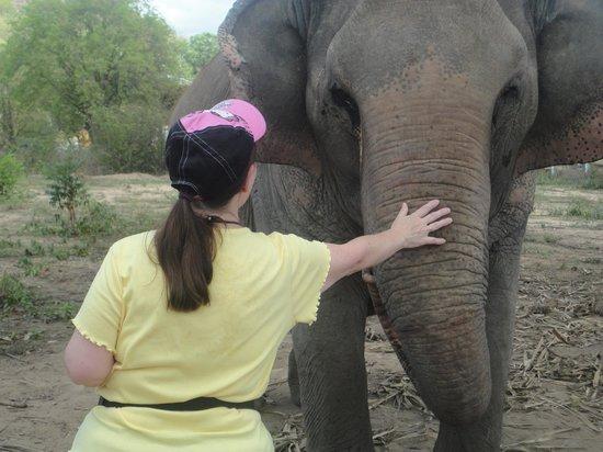 Hutsadin Elephant Foundation : the lady