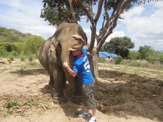 Hutsadin Elephant Foundation : we will miss her