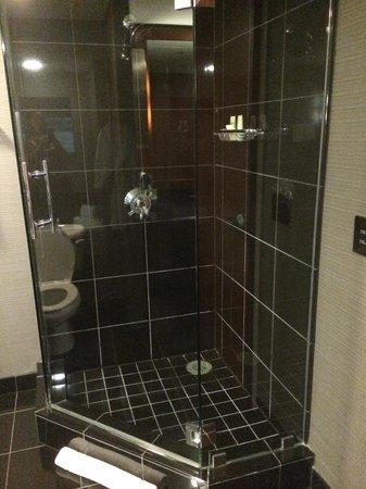 Grand Hyatt DFW: Bathroom