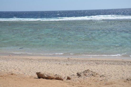 The Three Corners Sea Beach Resort : sea