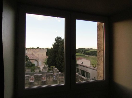 Hostellerie Chateau des Fines Roches : View from room