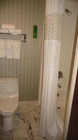 Hampton Inn Manhattan / Downtown - Financial District: Salle de bain