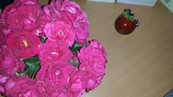 Callinica Hotel & Apartments: Beautiful flowers left in our room by the cleaner