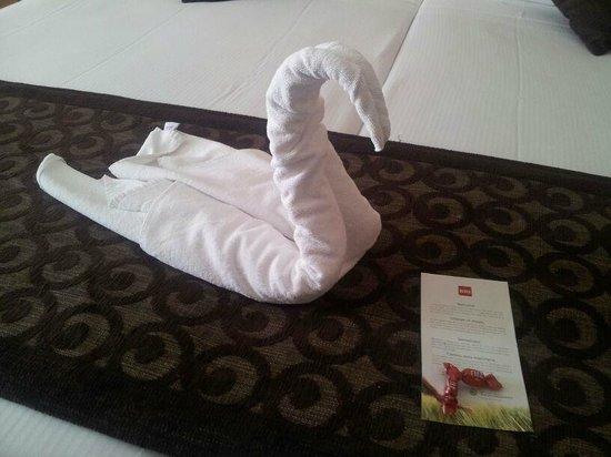 Hotel Riu La Mola: un cisne de bienvenida :)
