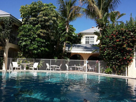 The Caribbean Court Boutique Hotel : Pool Area