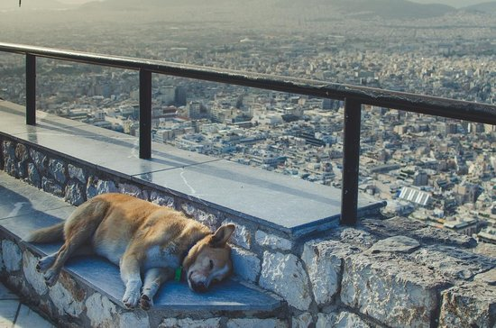Mount Lycabettus : View from Lycabettus