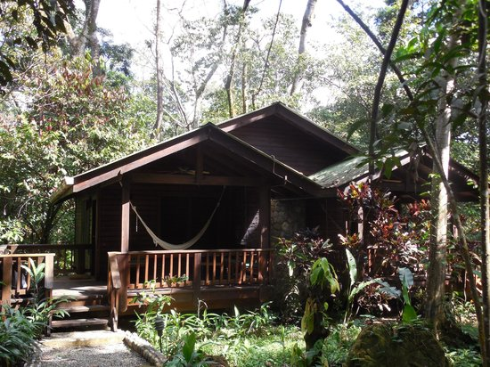 The Lodge and Spa at Pico Bonito : Our cabin - Standard Connecting