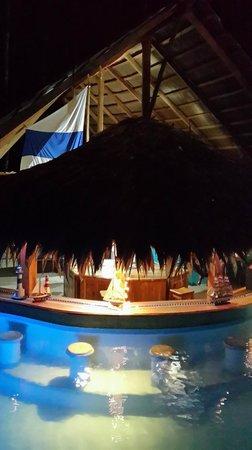 3 Bamboo: pool in the night