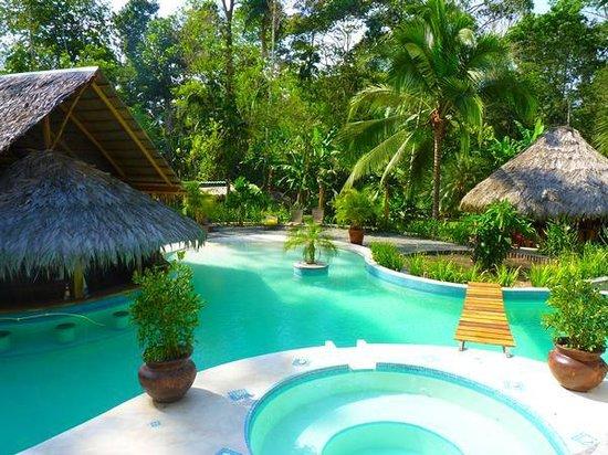 3 Bamboo: Pool