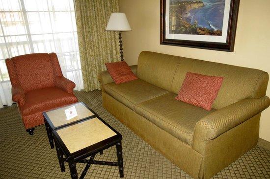 Pacifica Suites Santa Barbara: Comfy sofa