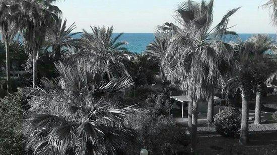 El Mouradi Port El Kantaoui: ♡♡♡♡♡♡♡♡