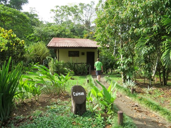Maquenque Eco-Lodge: Home sweet home