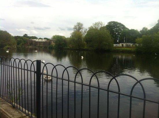 Wharfe Meadows Park Otley: main river