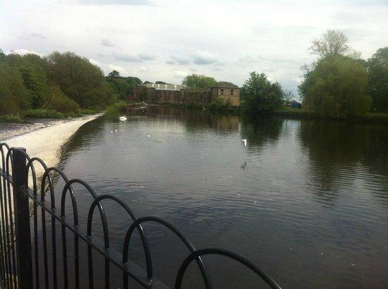 Wharfe Meadows Park Otley: relaxing