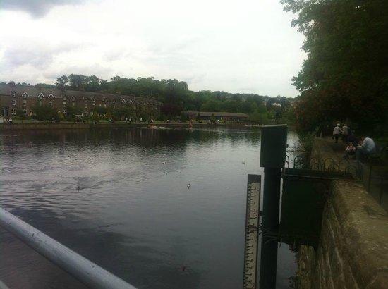Wharfe Meadows Park Otley: more river shots