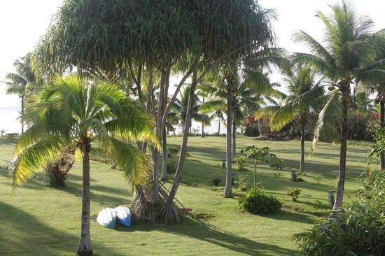 Raiatea Lodge Hotel : le jardin au bord de la piscine