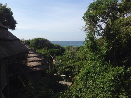 Thonga Beach Lodge: chalets