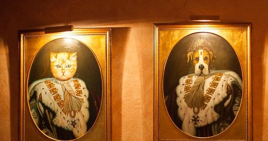 Krazy Kat's at The Inn at Montchanin Village : Great Cats & Dogs if only the food were eatable