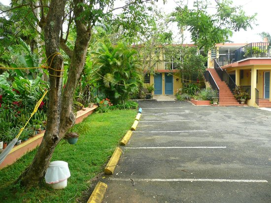 Ceiba Country Inn: Stairs lead to observation deck and breakfast room