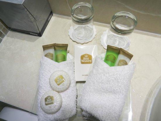 Best Western Plus White Horse Hotel: bath