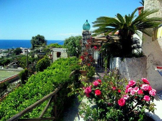 La Rosa Parco Residence : Blick von der Terrasse