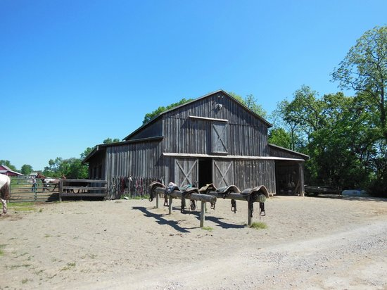 KD Guest Ranch: The barn