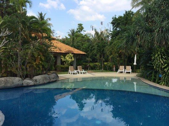Krabi Sands Resort : еще вид на бассеин