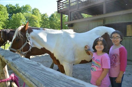 Rawhide Ranch: Working with the horses