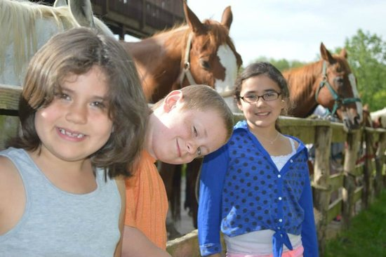 Rawhide Ranch: Kids loved the horses