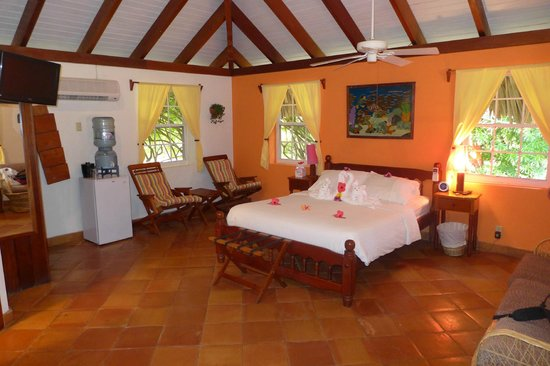 Jaguar Reef Lodge & Spa : Room 12