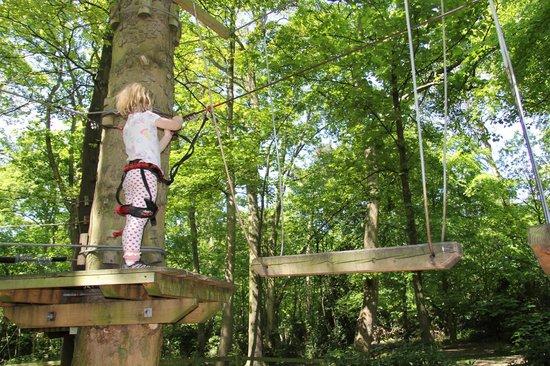 Jungle Parc: Low ropes