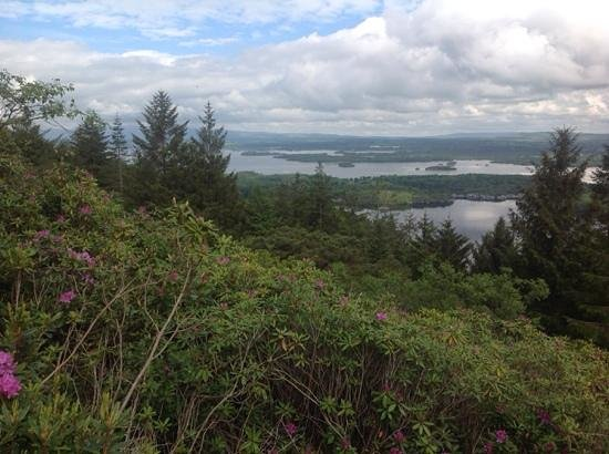 Torc Mountain Walk: beautiful views from the red trail