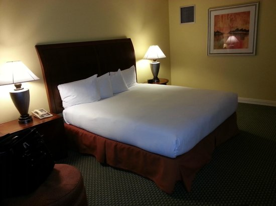 Hilton Houston Post Oak: bed
