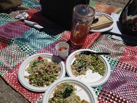 Compo Beach: picnic