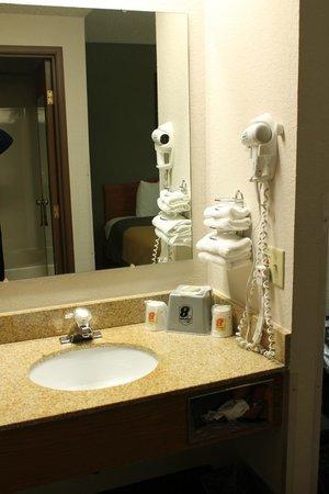 Super 8 Madison South : Madison, Super 8 - Madison South, Bathroom