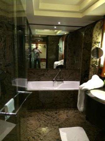 InterContinental Johannesburg Sandton Towers: banheiro