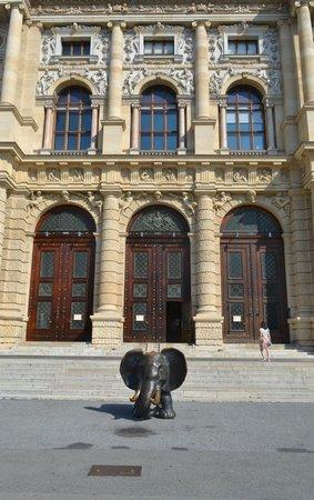 Muséum d'histoire naturelle de Vienne : Вход в музей естествознания