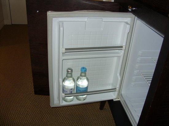 Bedford Lodge Hotel: Mini fridge - room 211