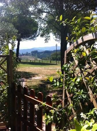Agriturismo La Collina delle Stelle: View from the terrace