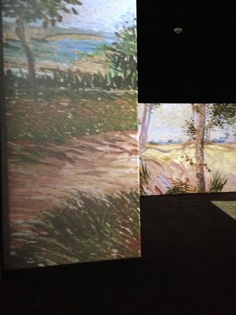 Discovery Place Science : Van Gogh Alive