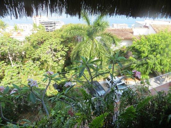 Casa de los Arcos : View from Casa Palapa