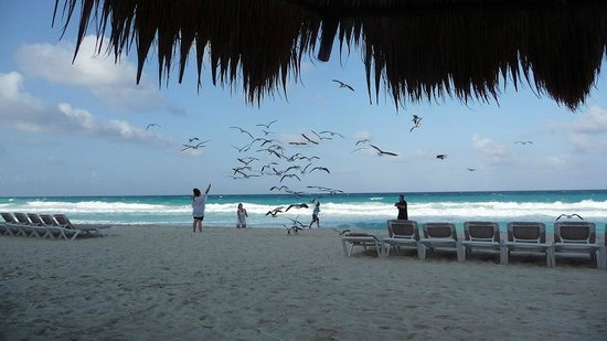 GR Caribe by Solaris: at the hotel's beach