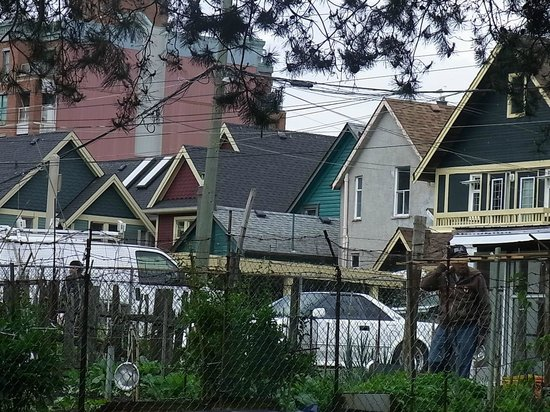 History Walks in Vancouver with James Johnstone - Private Tour: Skyline of Vancouver's Strathcona neighborhood
