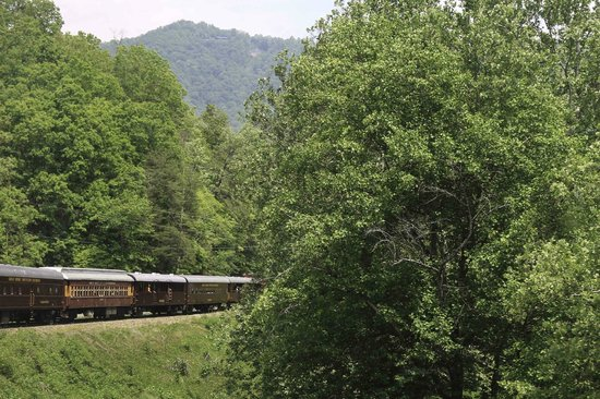 Great Smoky Mountains Railroad: Curves--you can see the front of the train from the back!