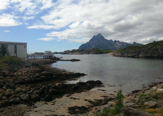 Lofoten Island: Praia rochosa e montanha